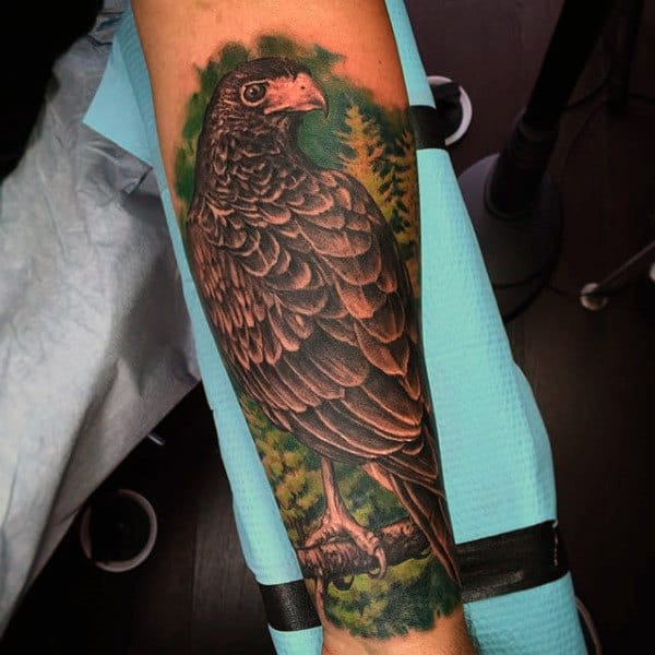 Colorful Hawk In Tree Half Sleeve Tattoo For Men
