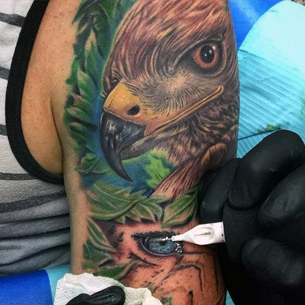 Colorful Realistic Hawk Head Tattoo On Male Half Sleeve