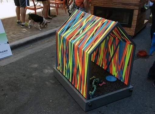 Colorful Simple Cool Dog Houses