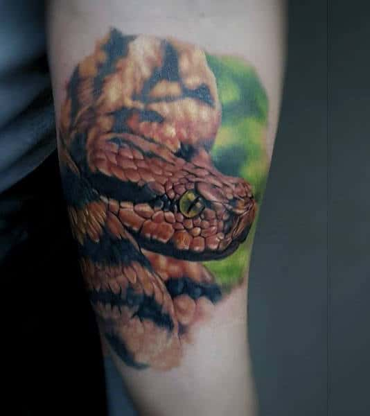 Colorful Snake Animal Guys Tattoos On Arm