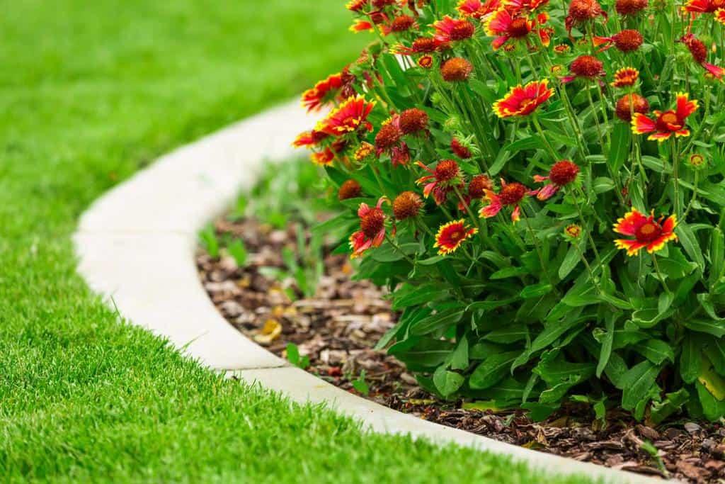 concrete render garden edging ideas yourrealtorrachael