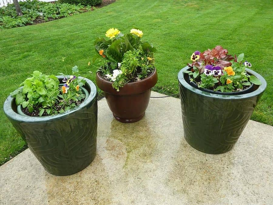 container garden 2 flower bed ideas