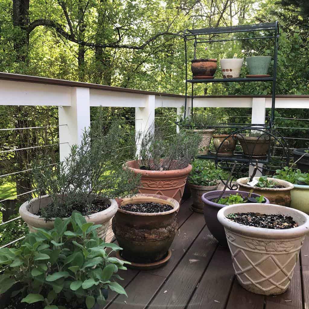 container herb garden herb garden ideas belva_hayden