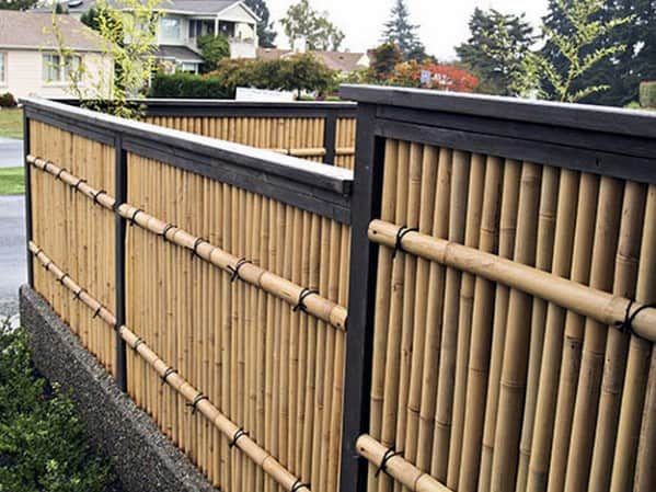 Contemporary Bamboo Fence Home Ideas