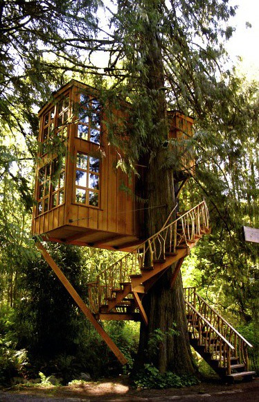 Contemporary Designs Treehouse Ideas