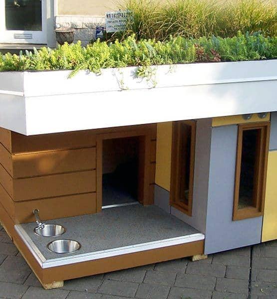 Contemporary Dog House Ideas
