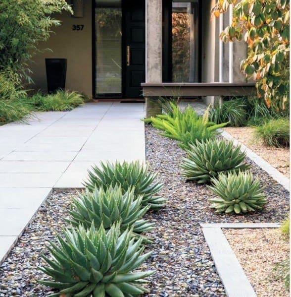 Contemporary Driveway Desert Landscaping Idea Inspiration