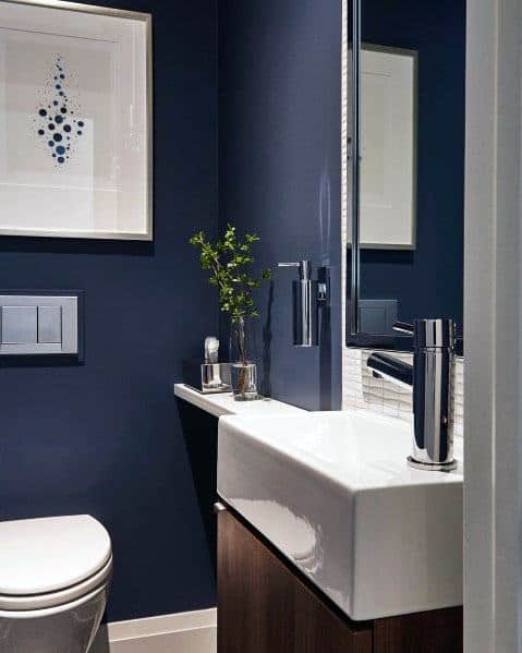 Cool Blue Painted Walls Contemporary Bathroom