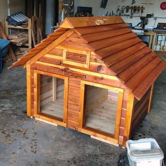 Cool Dog House Designs