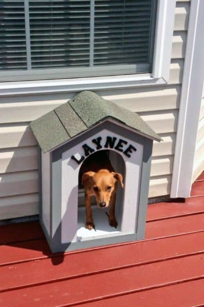Cool Doggy Dog House Themed Door Design Ideas For Pets