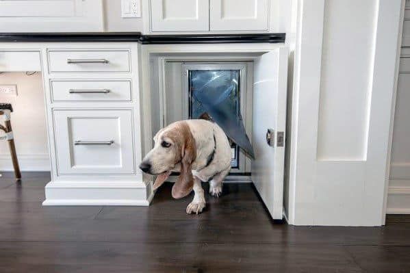 Cool Doggy Door Built In Kitchen Cabinets