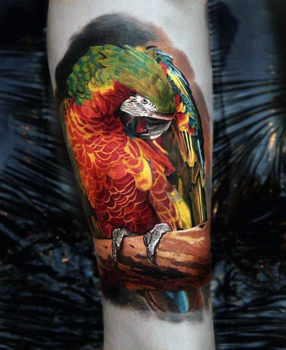 Cool Green And Red Feathered Bird Tattoo Male Arms