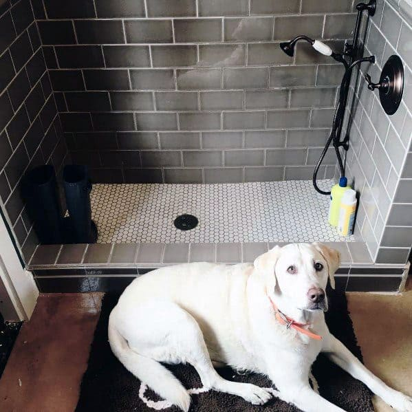 Cool Home Dog Wash Station