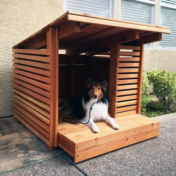 Top 50 Best Cool Dog Houses - Pads For Man's Best Friend