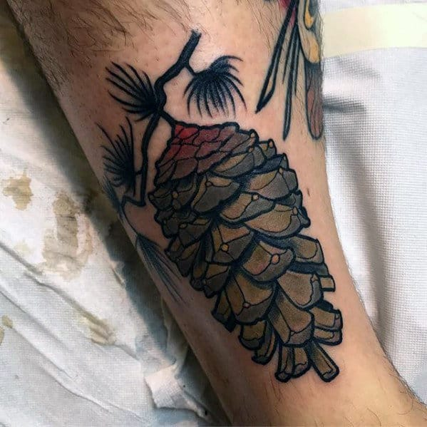Cool Neo Traditional Pine Cone Male Tattoos