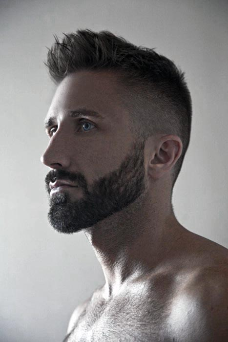 Pleasing 50 Short Beard Styles For Men Fashionable Facial Hair Ideas Schematic Wiring Diagrams Amerangerunnerswayorg