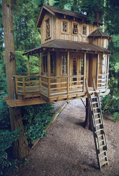 Cool Small Tree Houses