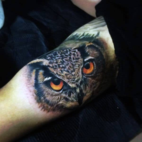 Cool Tattoo Of Sharp Eyed Owl On Upper Arms
