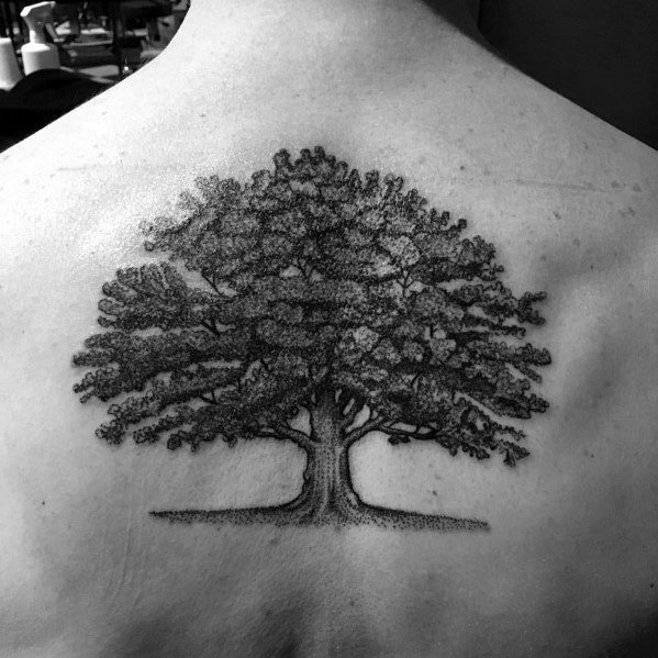 Cool Tree Tattoo Inspiration For Men On Back
