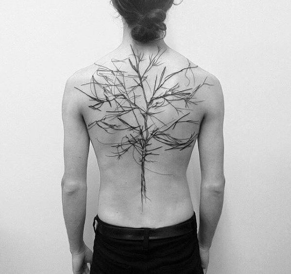 Cool Tree Tattoos For Gentlemen On Back