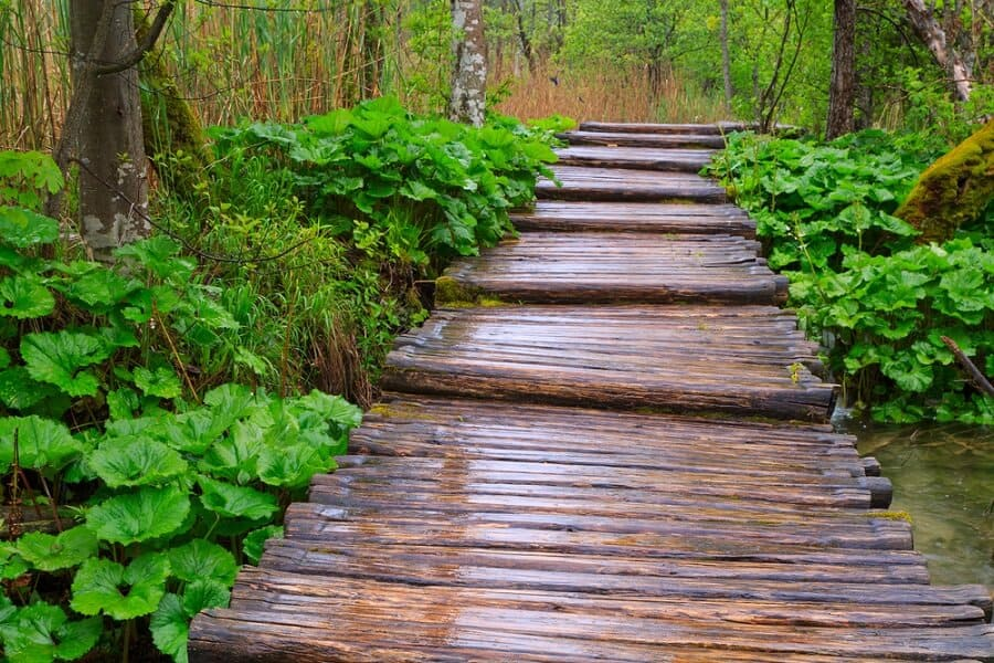 Cool Wooden Beams Walkway Path Ideas