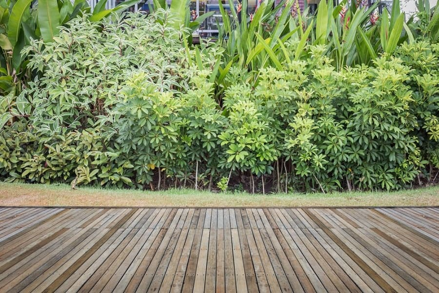 Cool Wooden Walkway Design Ideas