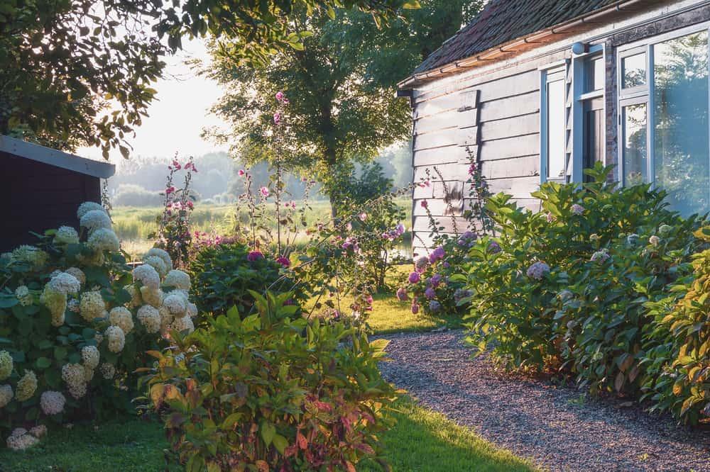 cottage garden shade garden ideas 1