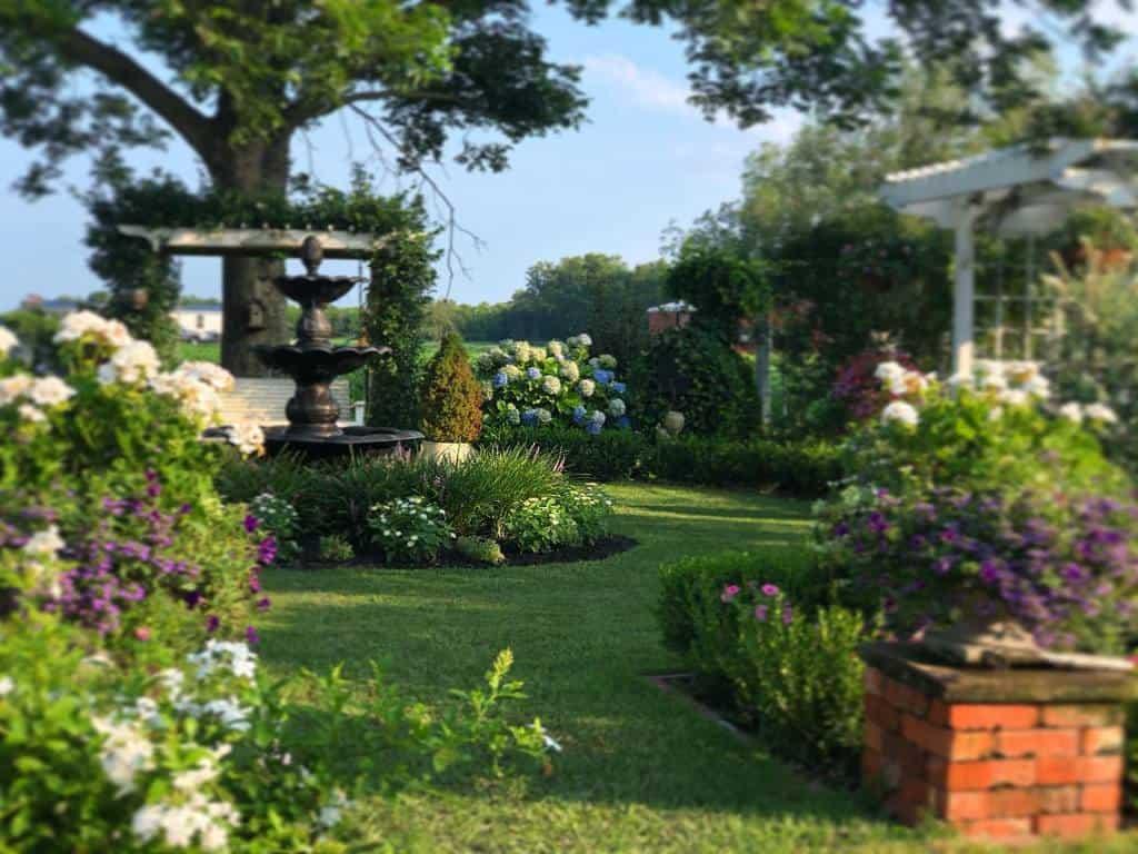 cottage garden shade garden ideas grayshaven
