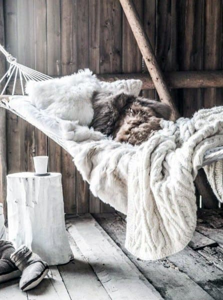 Cozy Rustic Lounge Indoor Hammock Ideas
