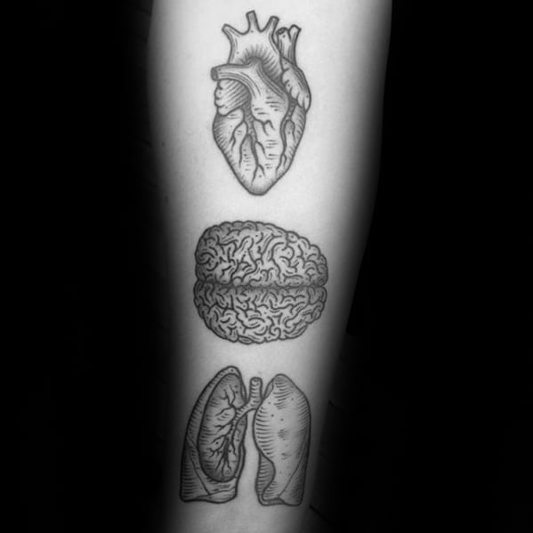 Creative Anatomical Lung Brain And Heart Inner Forearm Tattoos For Men