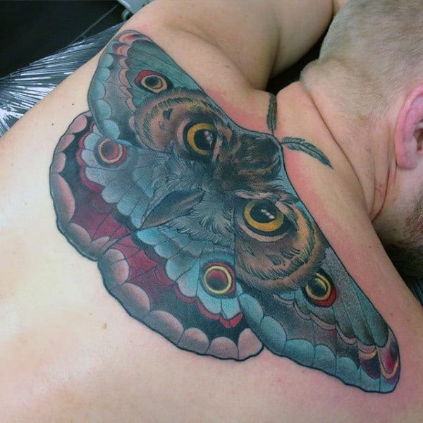 Creative Moth With Owl Eyes Mens Back Tattoos