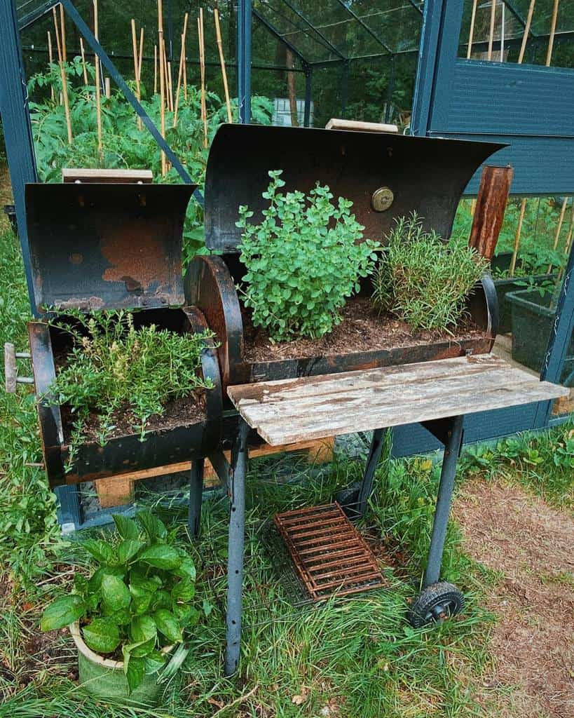 creative planter ideas herb garden ideas seidigweiss