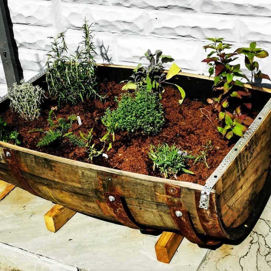 creative planter ideas herb garden ideas thereflectivecafe
