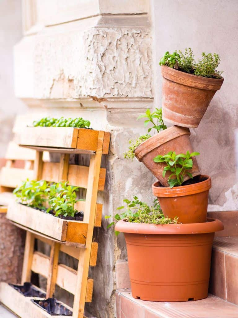 creative vertical garden ideas 4