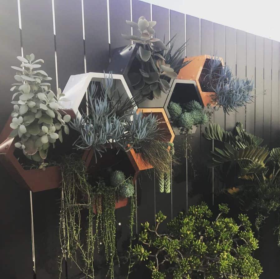 creative vertical garden ideas quercusgardens