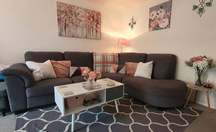 cute small apartment living room ideas _ourhopyardhome