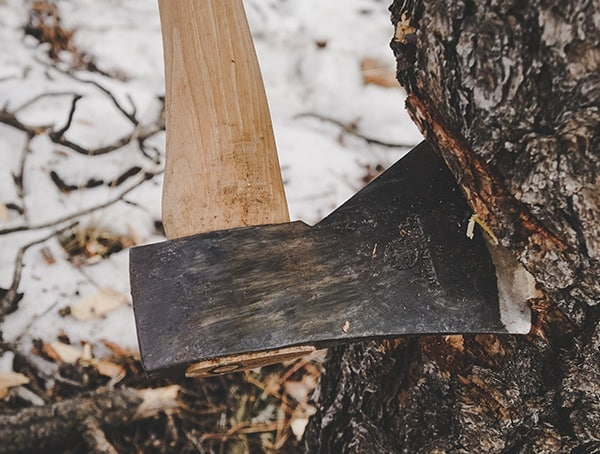Cutting Into Tree Hults Bruk American Felling Axe Reviews