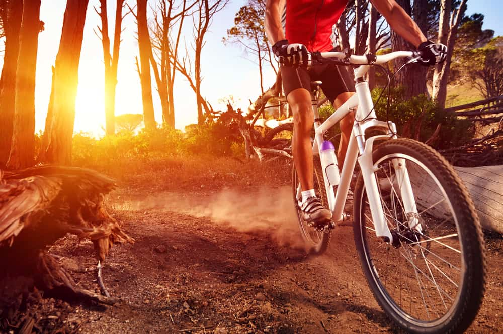 cyclist riding mountain bike on single track