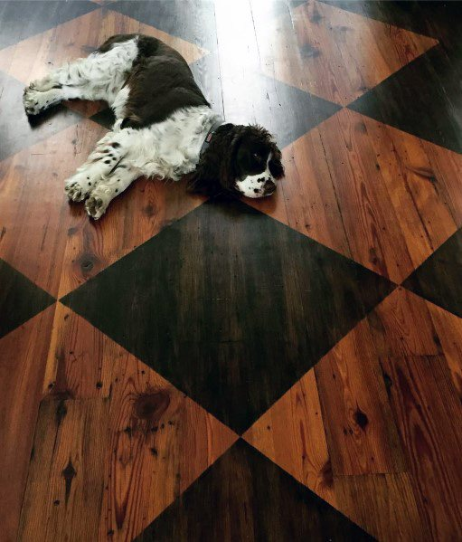 Dark And Light Hardwood Interior Painted Floor Design
