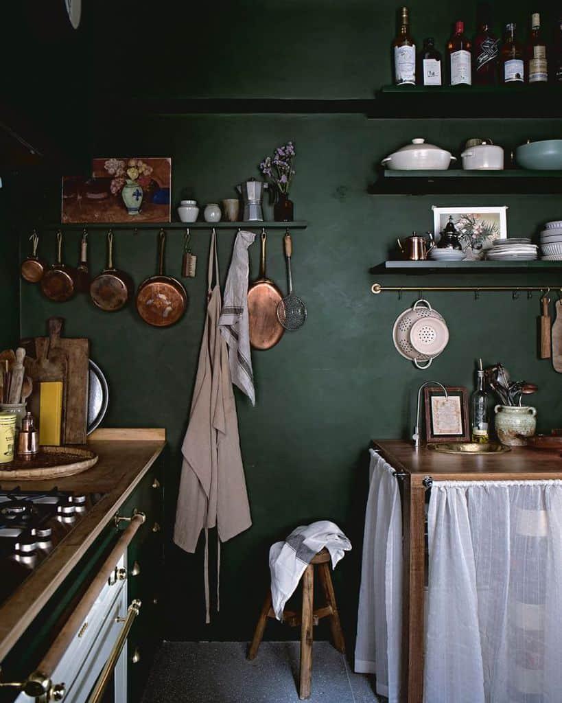 Dark Interior Kitchen Paint Colors Ladyandpups