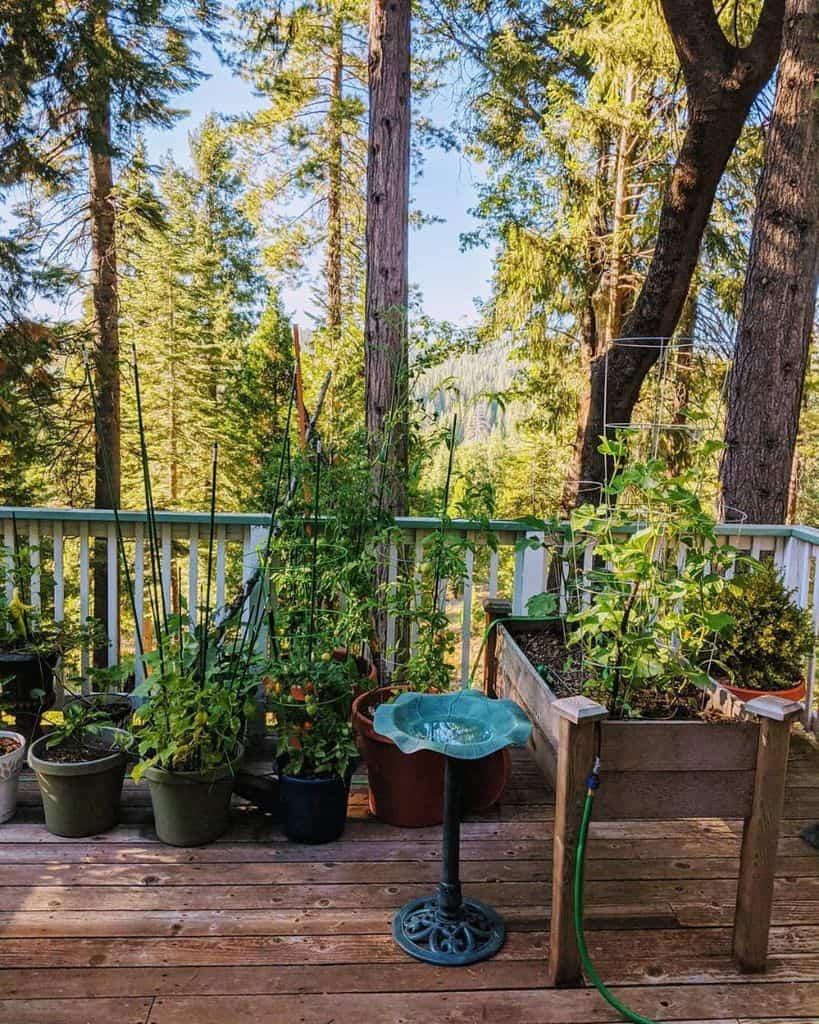 deck container garden ideas tahiraalzec