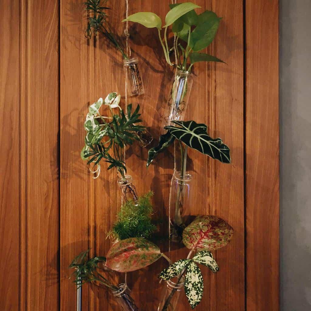 decor indoor garden ideas jungleintheclub