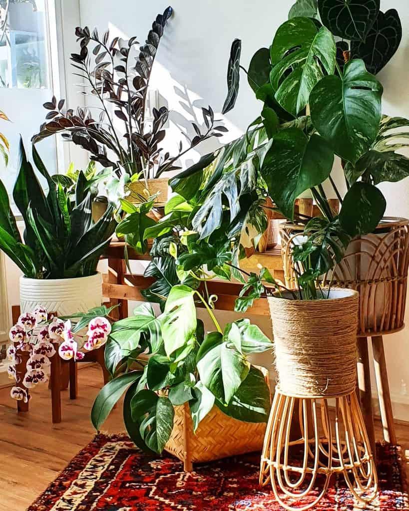 decor indoor garden ideas lortielor
