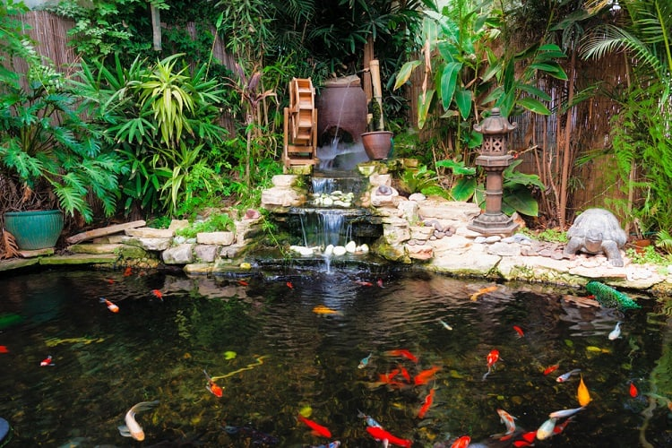Decorative Backyard Koi Pond With Fountain