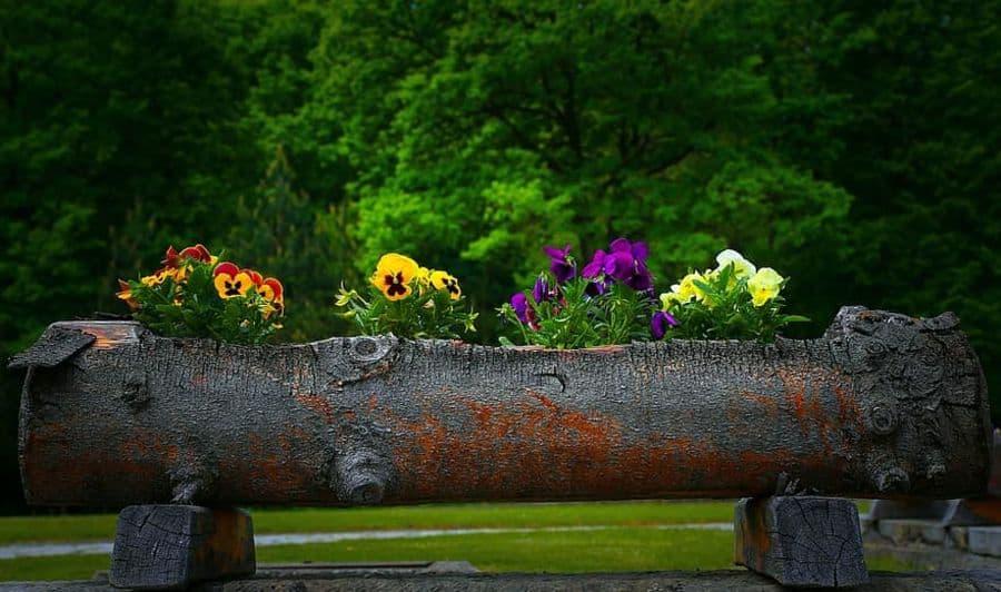 decorative planters and pots 5 Garden Decor Ideas