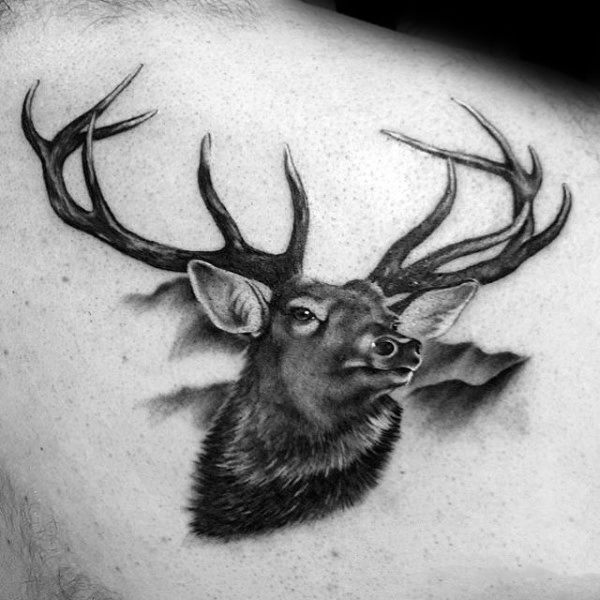 Deer Head Mens Shaded Realistic Upper Back Tattoo