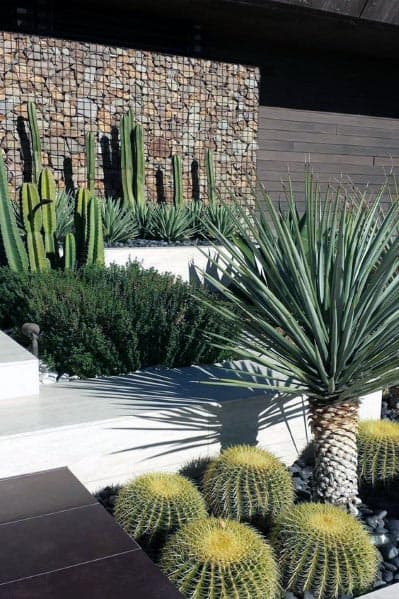 Desert Climate Luxury Front Yard Landscape Ideas