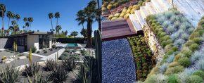 Top 70 Best Desert Landscaping Ideas – Drought Tolerant Plants