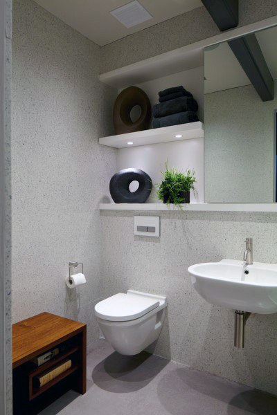Mirror Design Wall Toilets