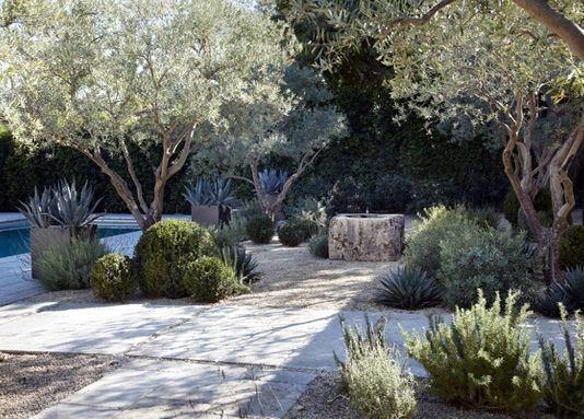 Designs Desert Landscaping